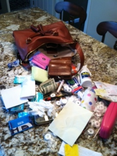 I literally looks like my pocketbook threw up.